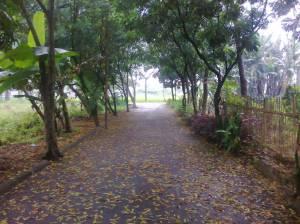 Tanahku1 by Hijihawu